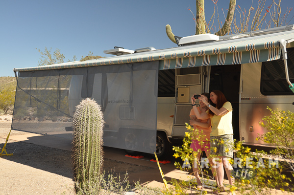 Organ Pipe Cactus National Mon Airstream 2016